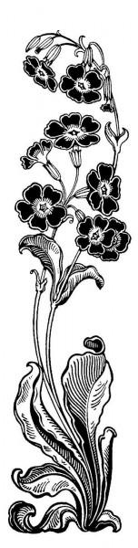 vertflowerborder2