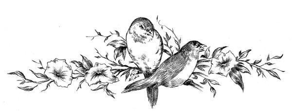 BirdsBranchesDrawingVintageGraphicsFairy1