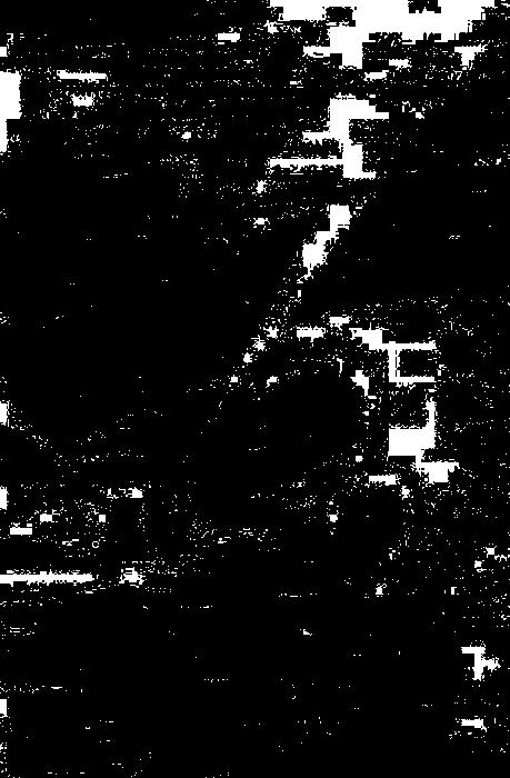 sasa11