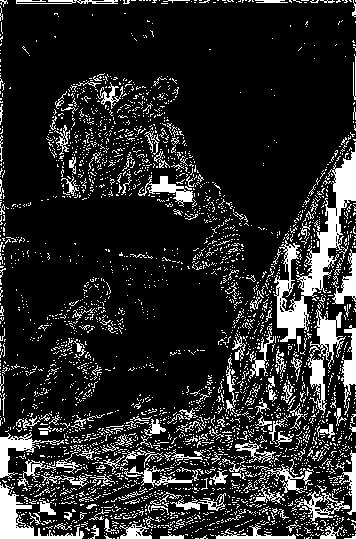 sasa6
