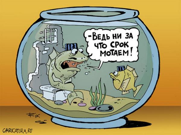 в-суде-дохнут-рыбки