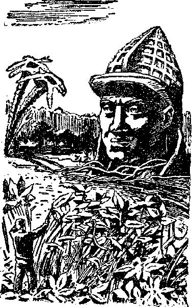 i_013 (1)