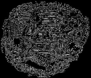 0 (6)