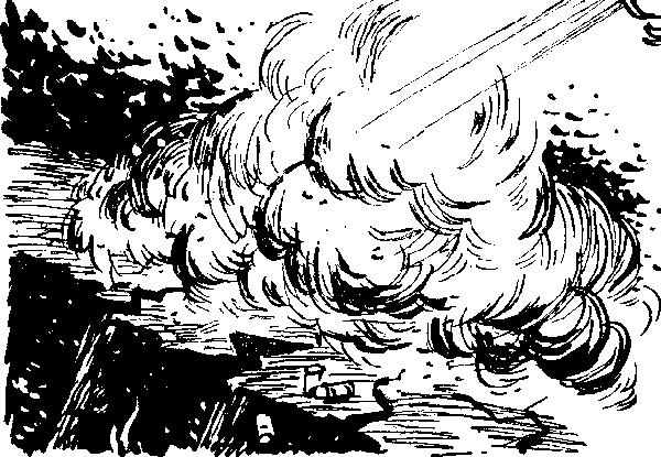 i_025 (1)