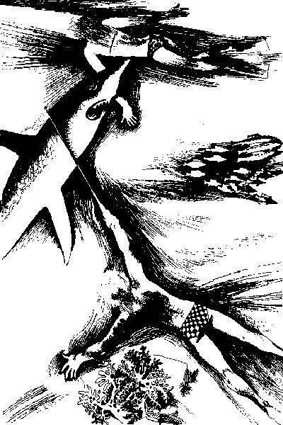 i_015 (4)