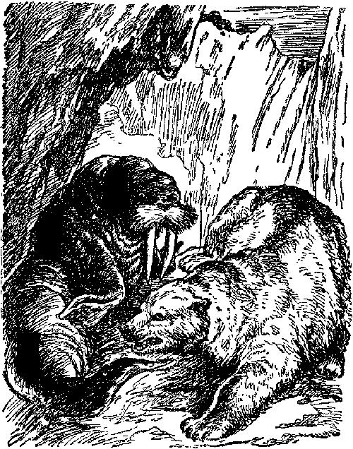 i_020