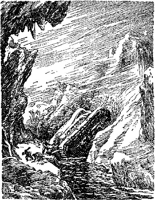i_021