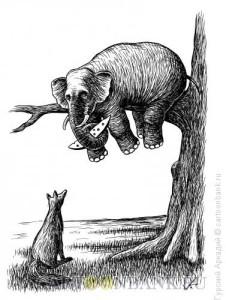 slon-na-dereve
