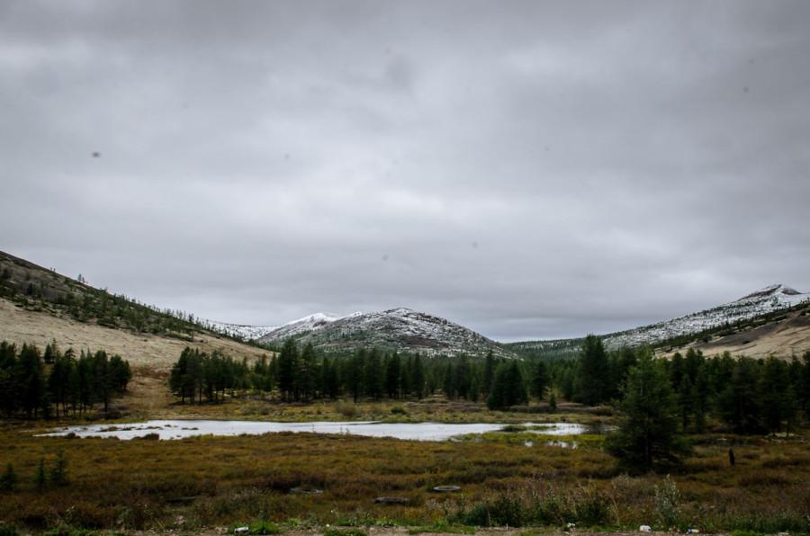 Яблоневый перевал