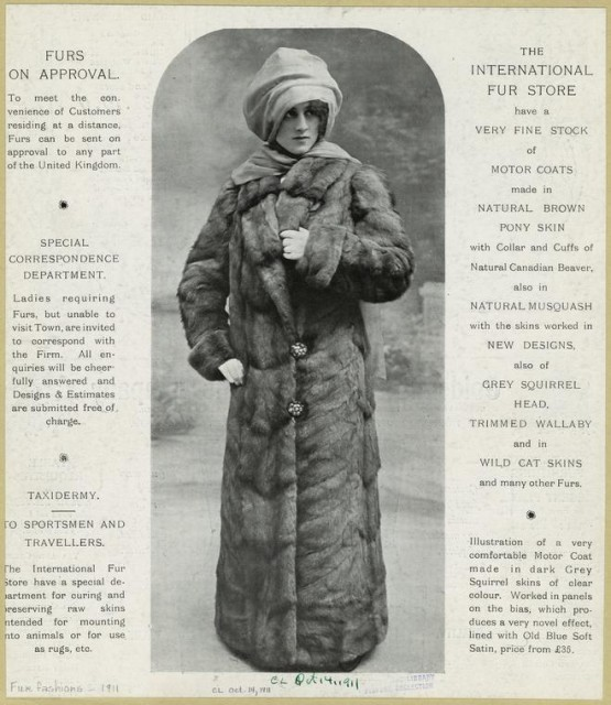 1911 Illustration of a very comfortable motor coat made in dark grey squirrel skins of clear colour