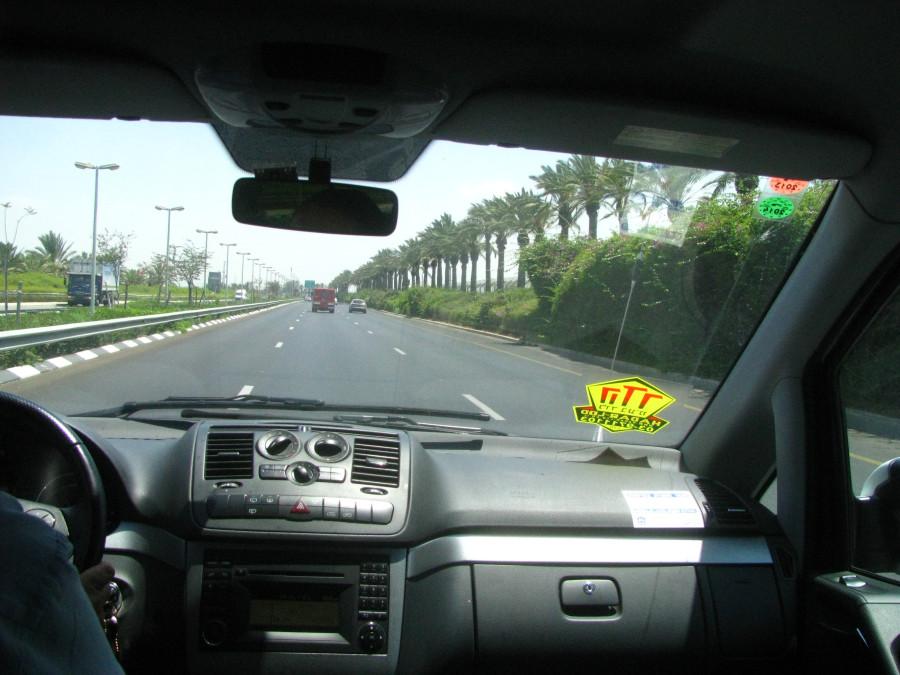Вдоль дороги, нас приветливо встречали пальмы и кипарисы...