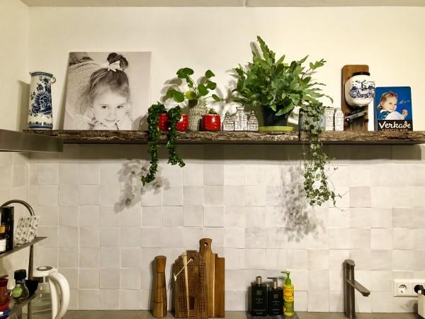 Всё о кухне и о растениях для кухни 47D6F344-8E7A-4B35-B7B9-0AE502524864.jpeg