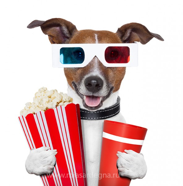 Glasses-Movie-Popcorn-Dog