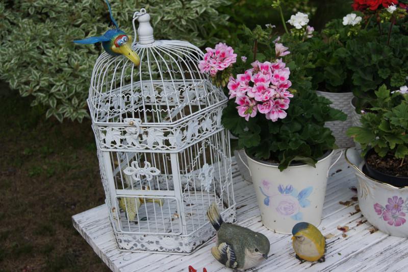 Дома мы собираем бегемотиков со всего мира, а на даче пошел птичий уклон.