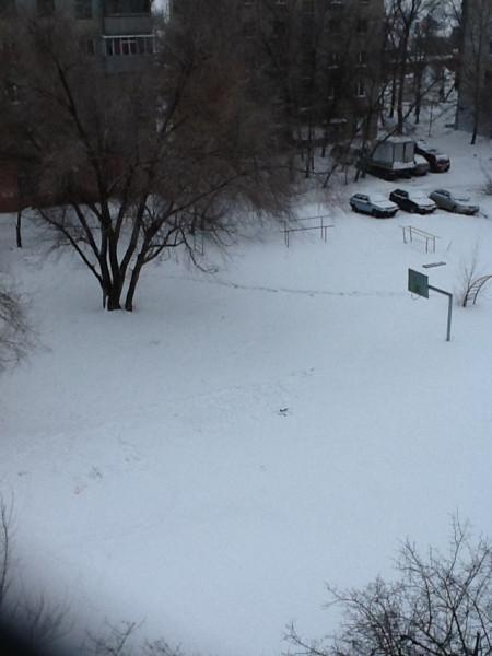 Зима не сдает позиций.