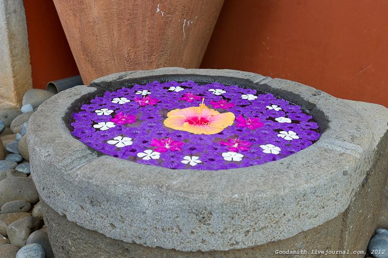 Чаша с цветочными лепестками при входе в музей рома