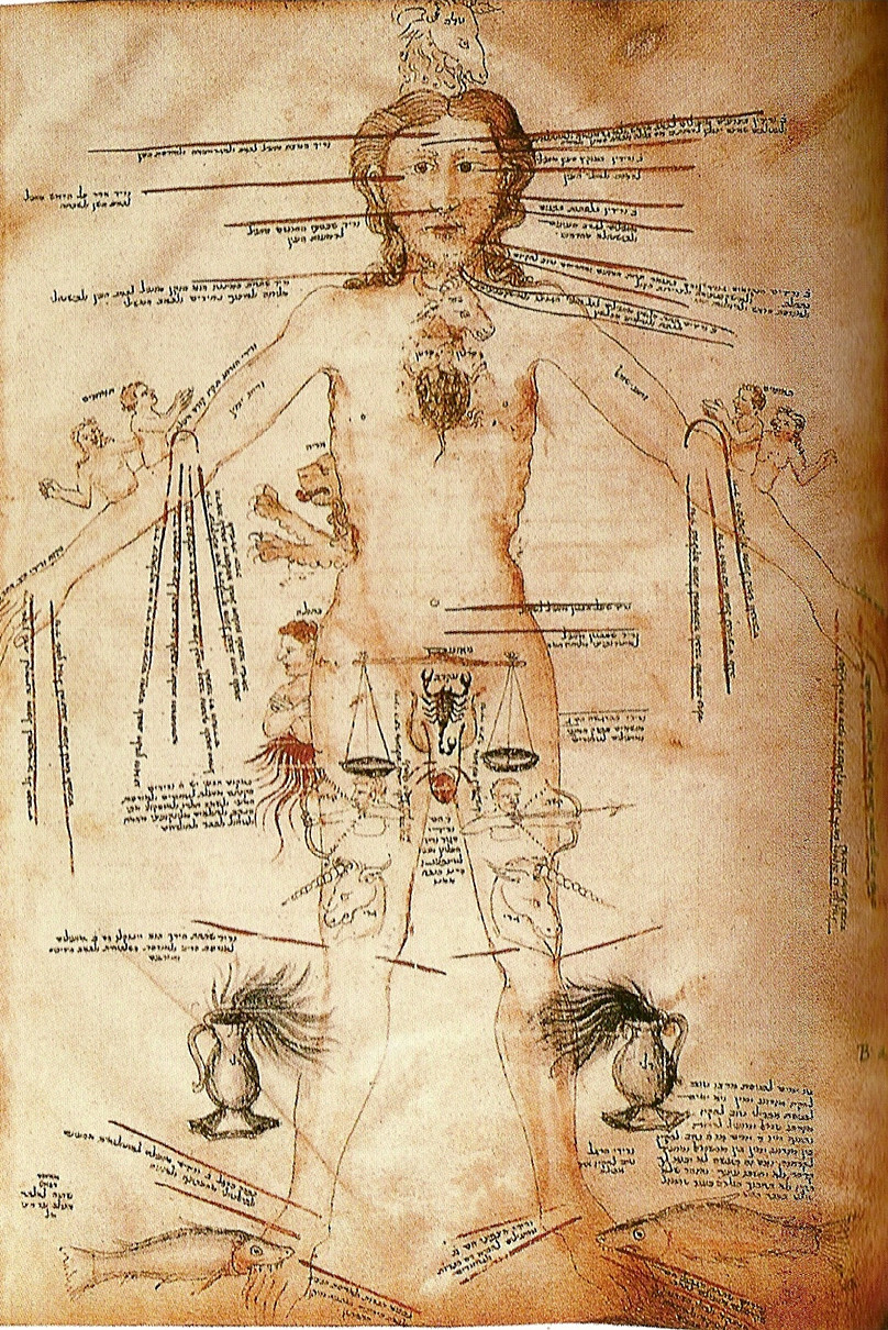 Astrological signs and human body parts
