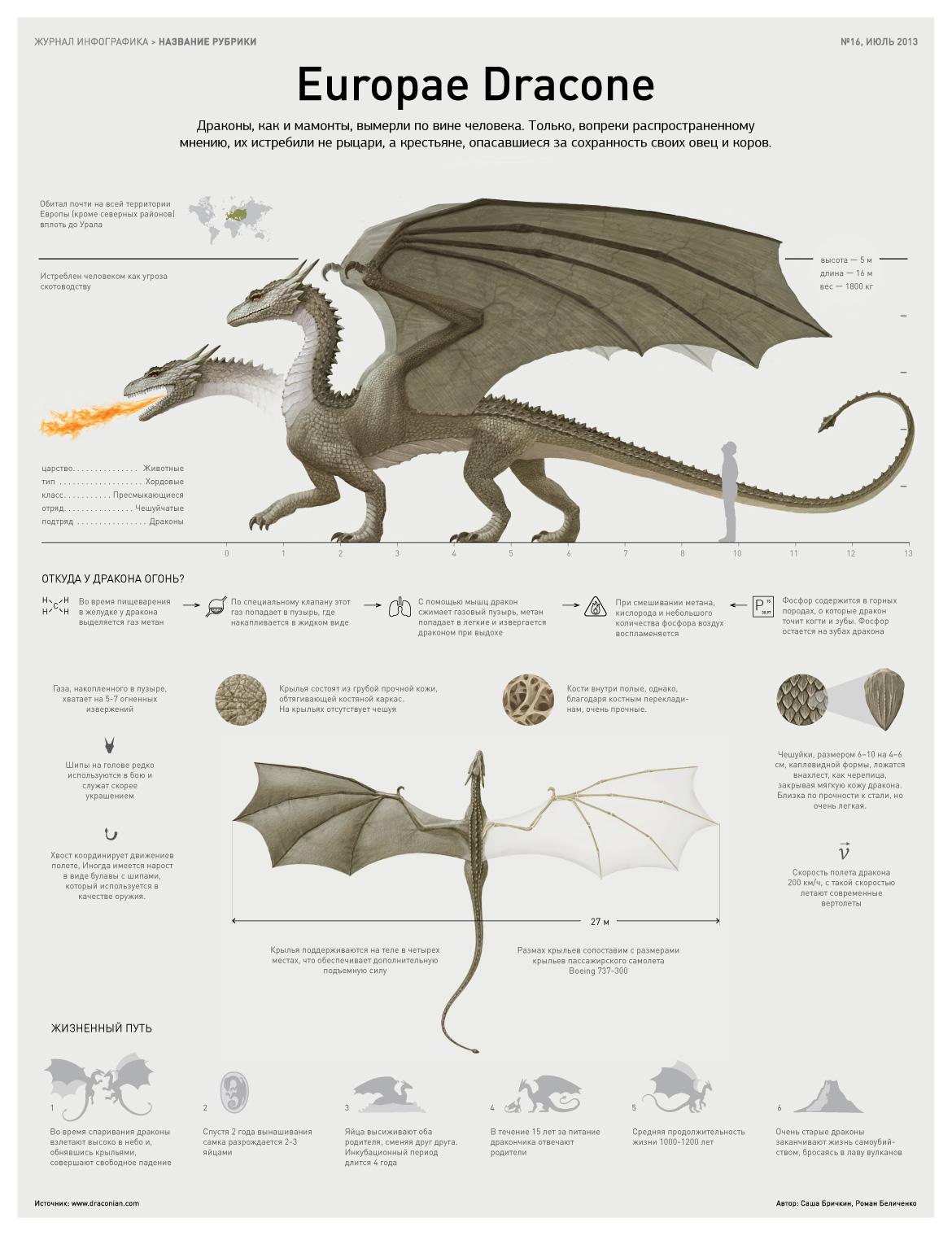 Infografika Dragon