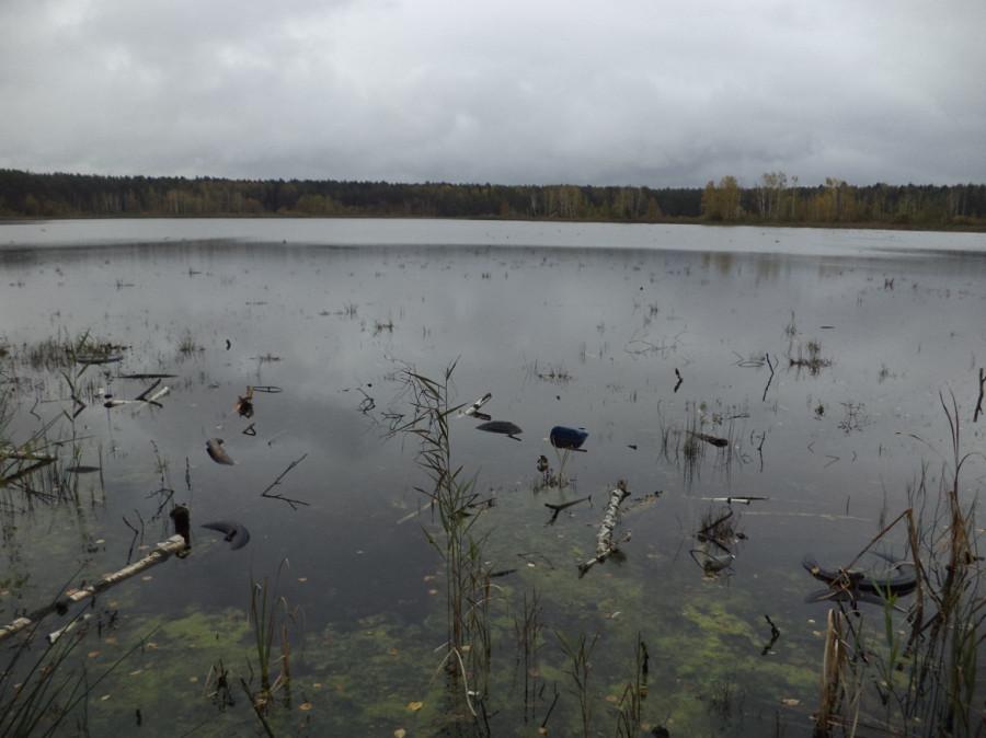 имени мазуринское озеро старые фото того, здесь