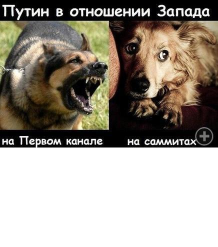 Суть Пукина