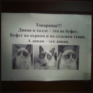 IMG_20130323_121657