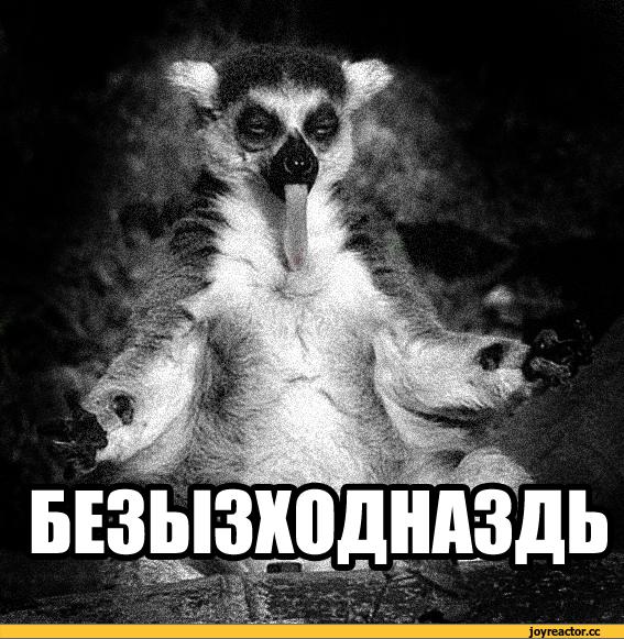 безысходность-узбагойся-песочница-875386