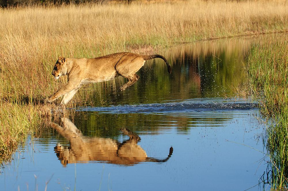Botswana_0602