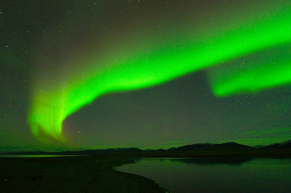 Wrangel-island_16326
