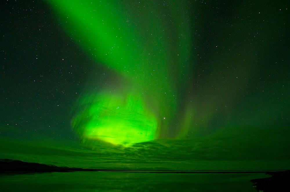 Wrangel-island_16311