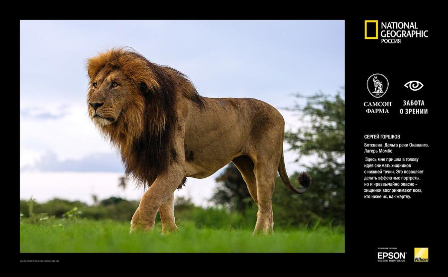 AFRICA EXPO-B12