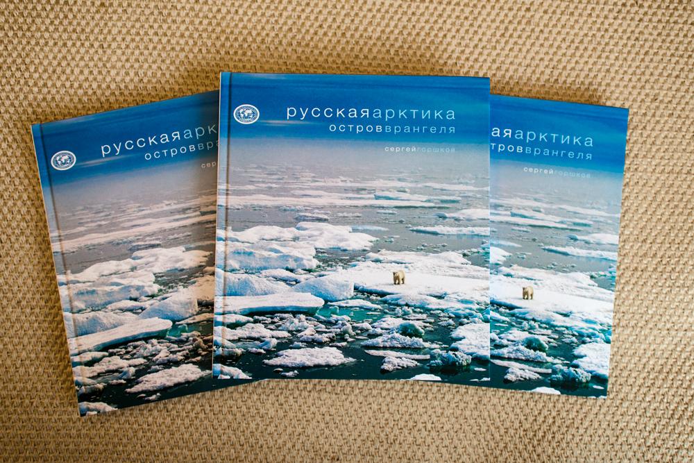 Книги Сергея Горшкова