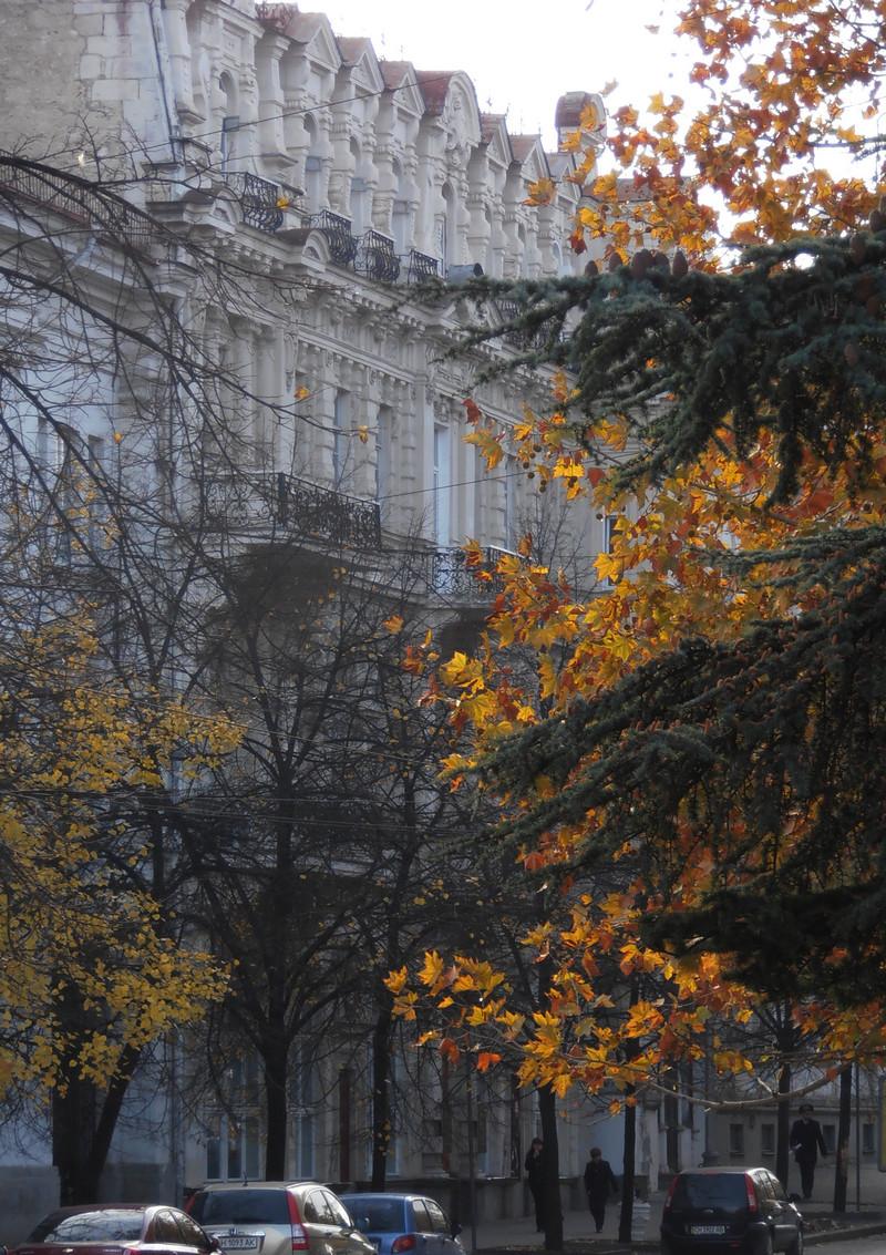 Здание музея им. Крошицкого