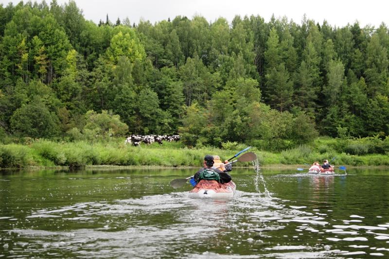 ловля возьми реке чепца