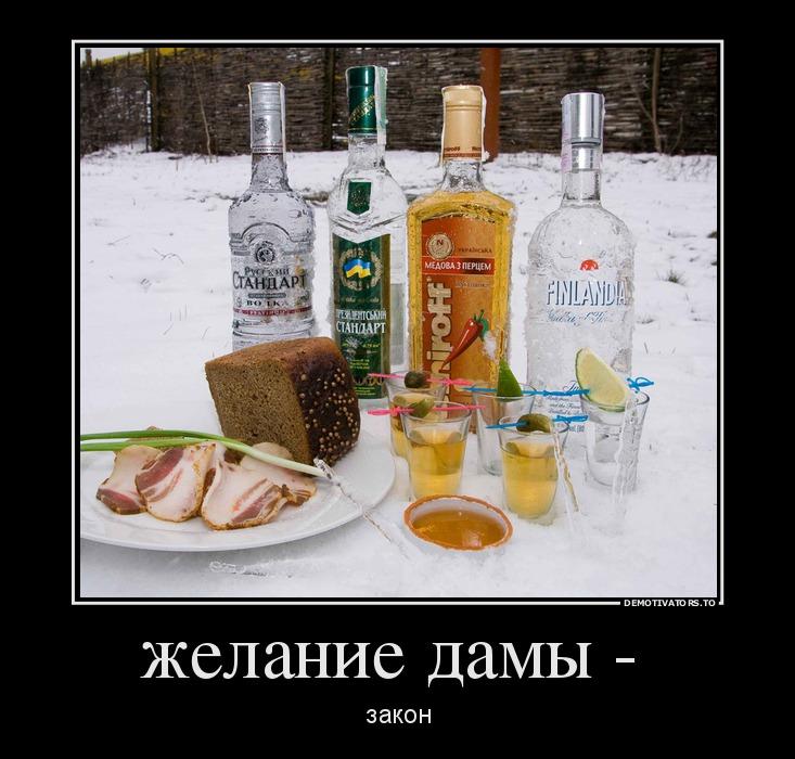 885694_zhelanie-damyi-_demotivators_to