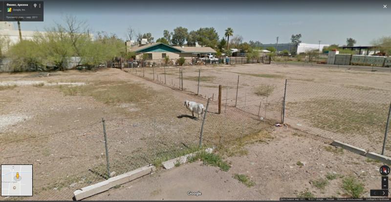 Финикс, Аризона (8)