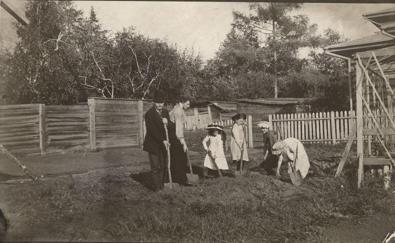 Семейные работы на огороде