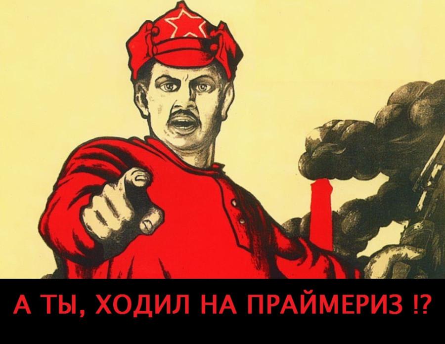 На праймериз «Единой России» не пришли и 10% жителей региона