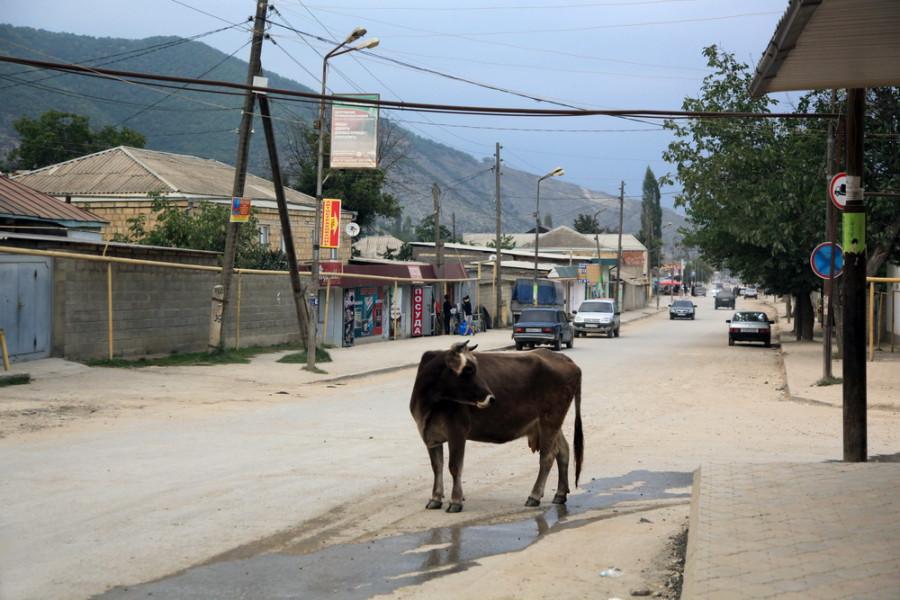 горное село Маджалис