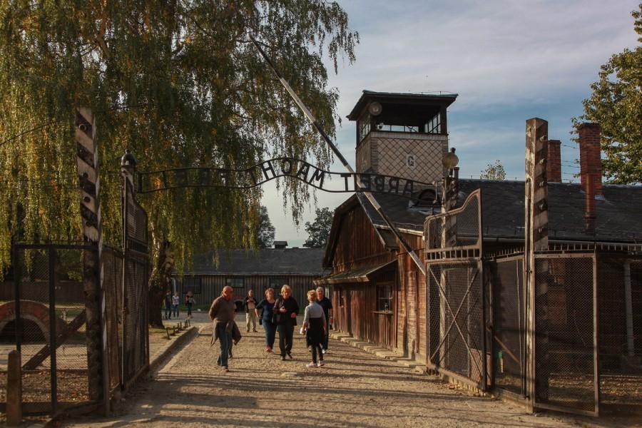 Освенцим музей купить билеты билеты на август в большой театр