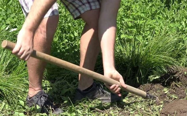 Свекровь требует, чтобы сын помог выкопать колодец на даче. Иначе делать это