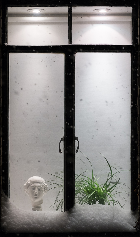 2014_Window-4763