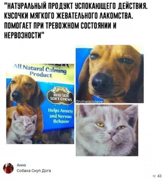 fotopodborka_subboty_80_foto_24.jpg
