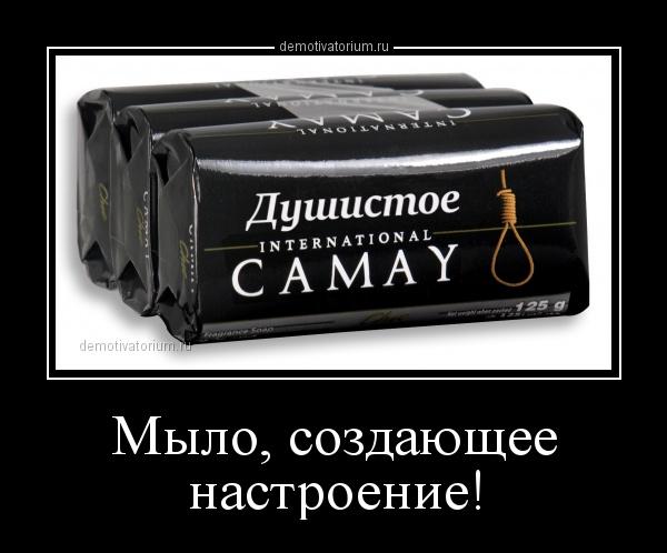 milo_sozdaushee_nastroenie_163232.jpg