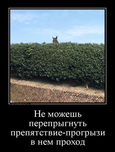 1535956872_demotivatory-21.jpg
