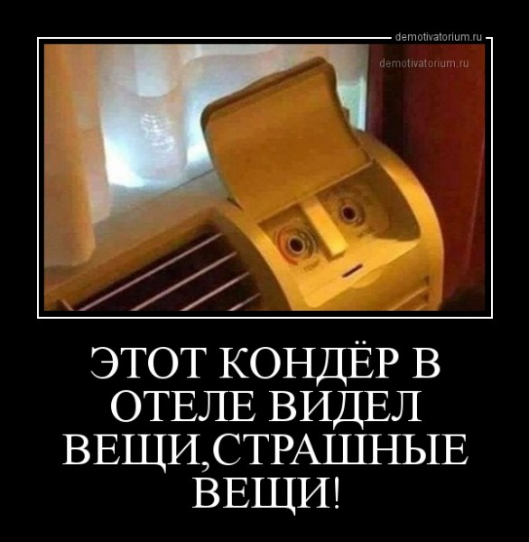 etot_konder_v_otele_videl_veshistrashnie_veshi_164392.jpg