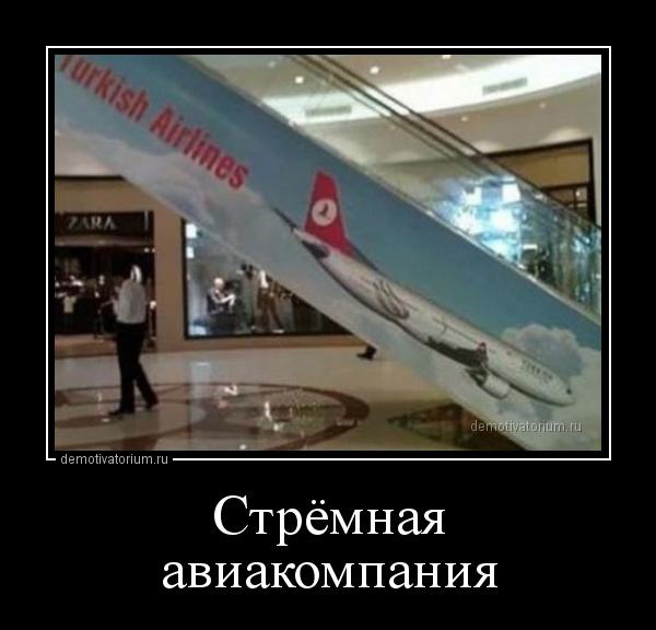 stremnaja_aviakompanija_164326.jpg