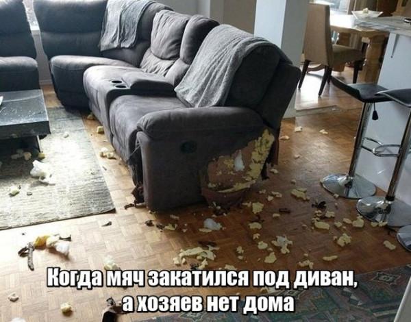 fotopodborka_pjatnicy_79_foto_1 (1).jpg