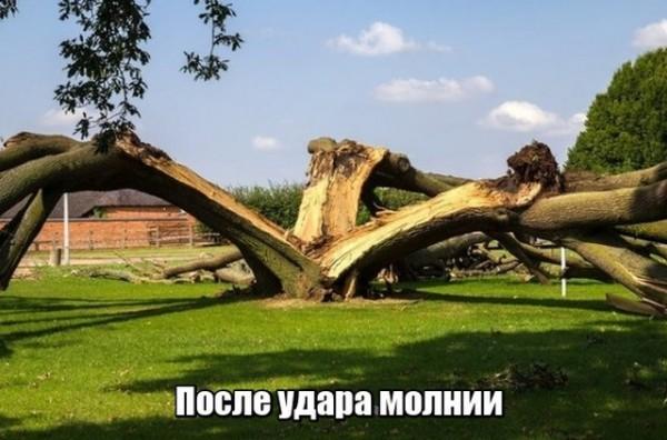fotopodborka_pjatnicy_79_foto_6.jpg