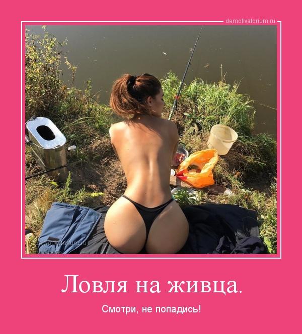 lovlja_na_jivca_164720.jpg