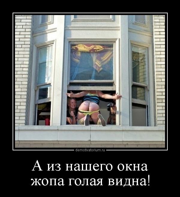 a_iz_nashego_okna_jopa_golaja_vidna_164185.jpg